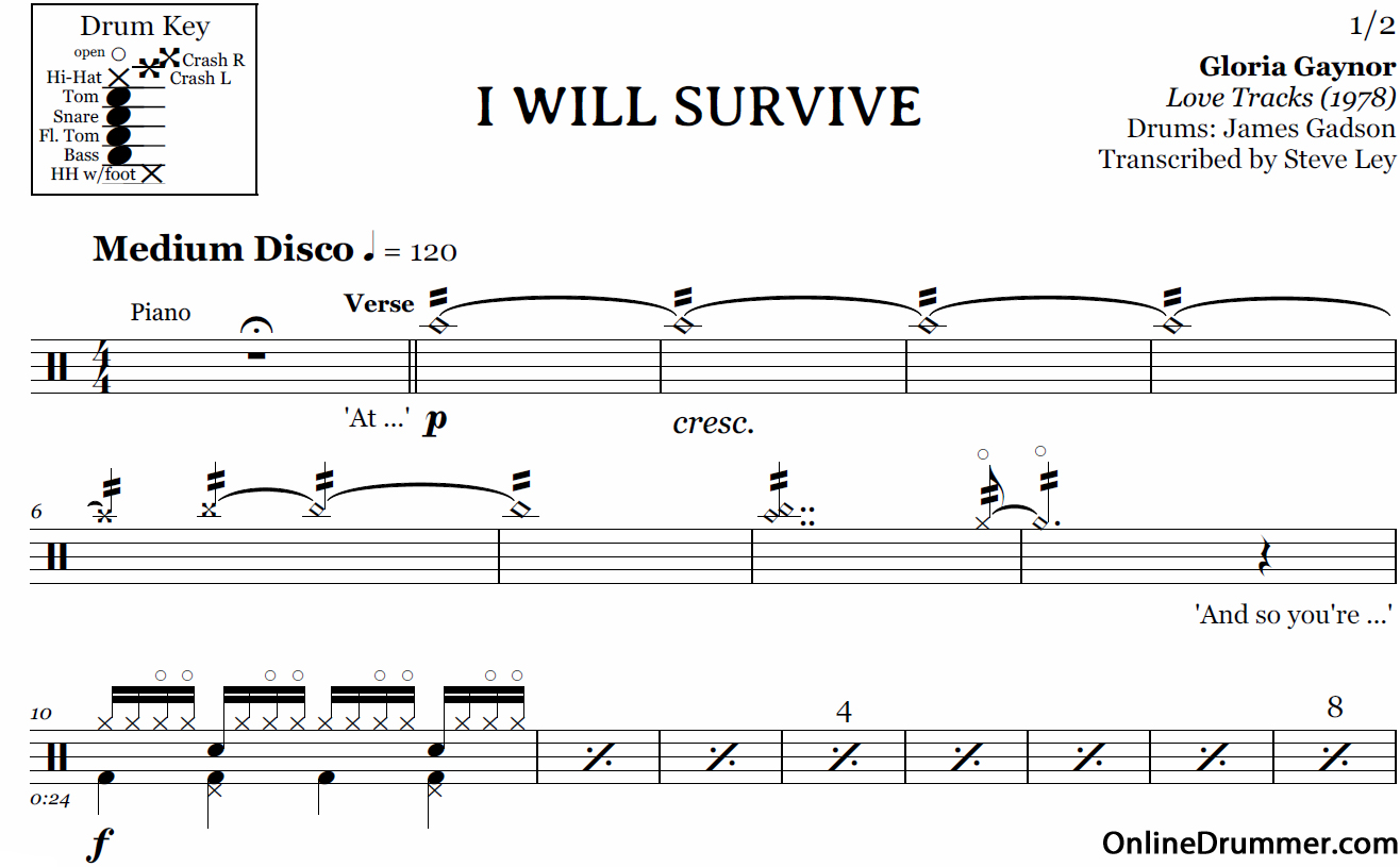 partition batterie i will survive